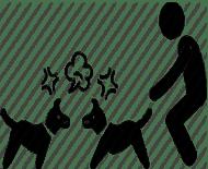 köpekdövüştürenlerdostdernegi